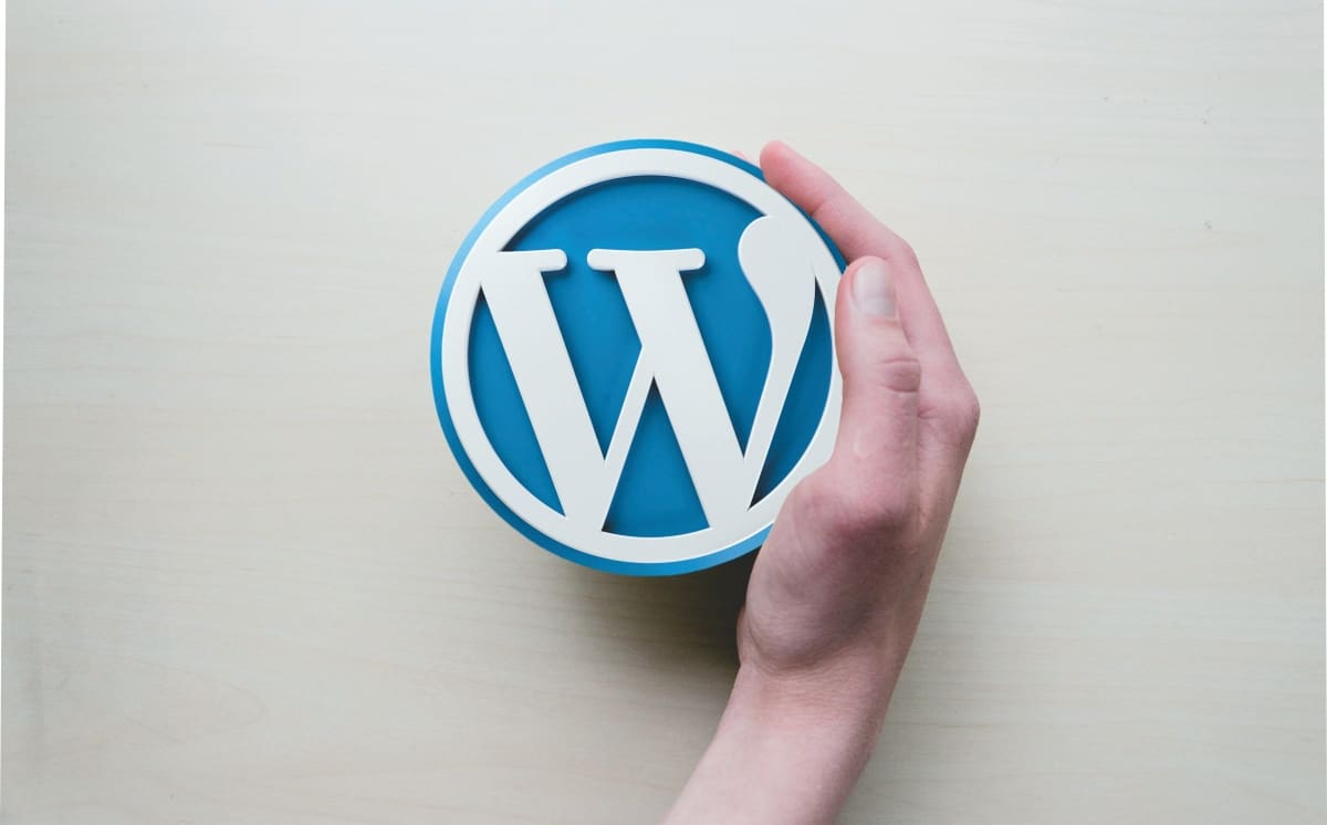 wordpress schulung in der hand